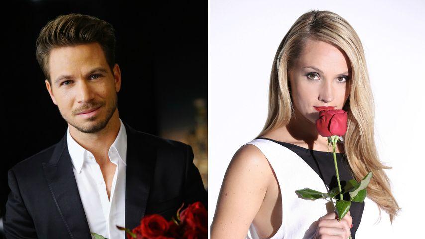 Bachelor vs. Bachelorette: Wer hat mehr Glück in der Liebe?