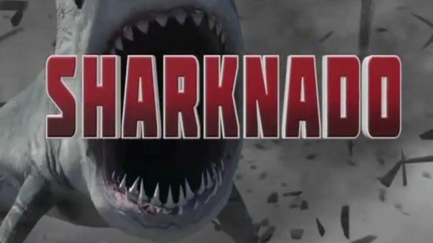 Sharknado: So entstand der irre Trashfilm-Titel