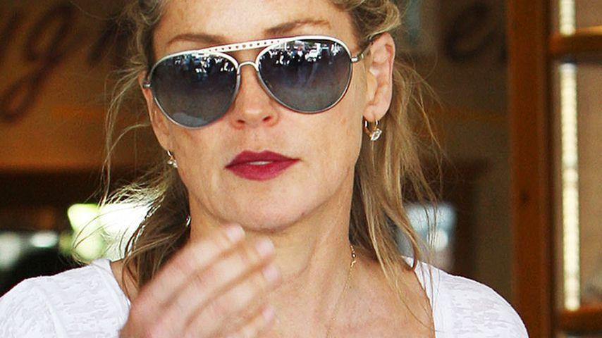 """Sharon Stone Sprecher: """"Die Anklage ist absurd!"""""""