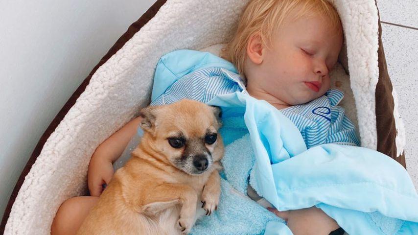 Stacey Solomons Sohn Rex und Hund Theo