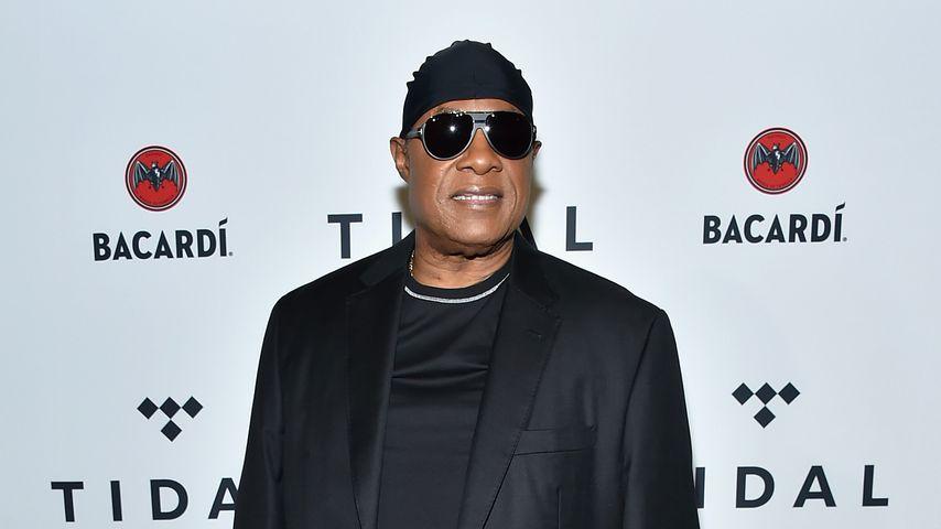Stevie Wonder in New York