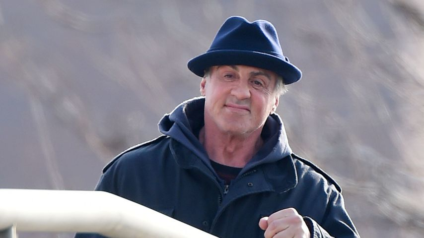 Teil 7 wird gedreht: Sly Stallone ist wieder Rocky