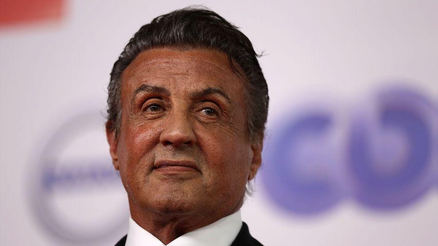 Missbrauchsvorwurf: Sylvester Stallone wird nicht angeklagt