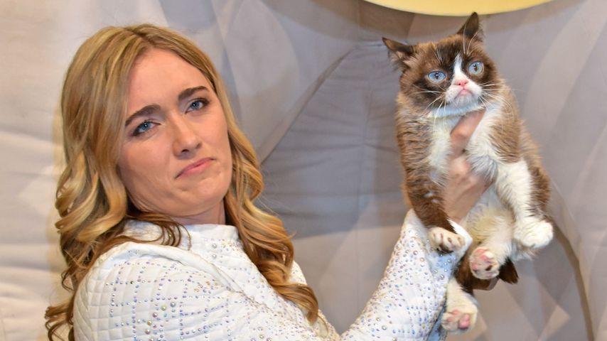 Grumpy Cat ist tot: Weltberühmte Internet-Katze mit nur sieben Jahren gestorben
