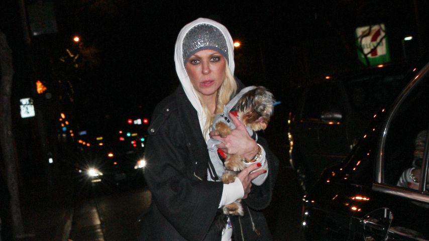 Tara Reid in West-Hollywood beim Spaziergang mit ihrem Hund, Dezember 2018