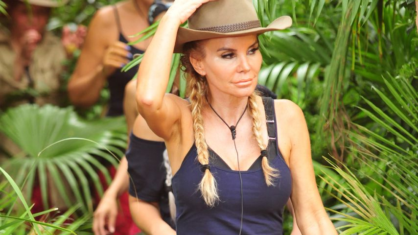Tatjana Gsell am siebten Tag des Dschungelcamps