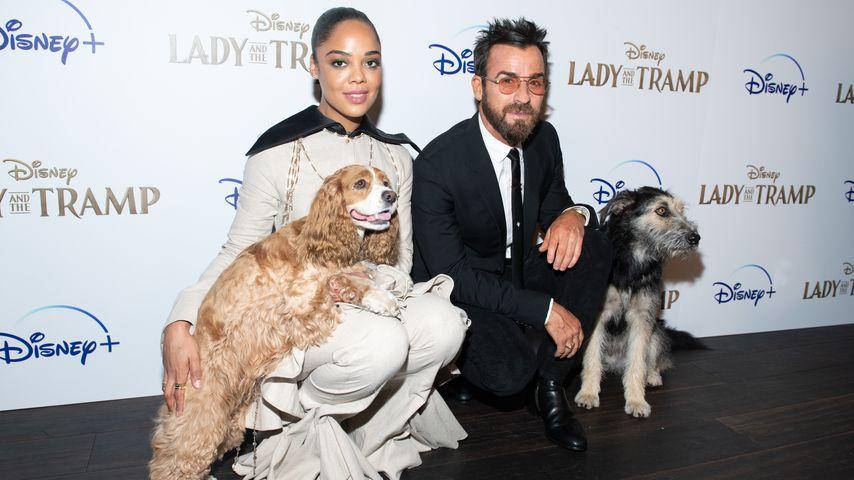 """Tessa Thompson und Justin Theroux mit den Hunden Rose und Monte aus """"Susi und Strolch"""""""