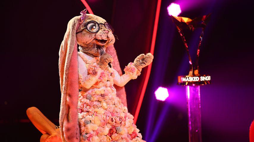 """""""Masked Singer"""": Diese Promi-Frau steckt im Hasen-Kostüm!"""