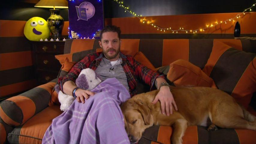 """Tom Hardy trauert um seinen Hund: """"Du warst ein Engel!"""""""