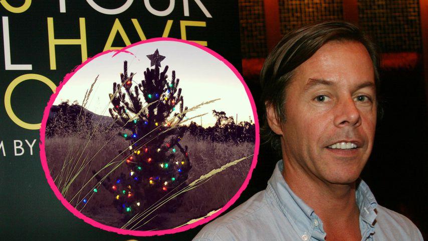 Weihnachtsbaum im Sommer: So gedenkt Andy Spade seiner Frau