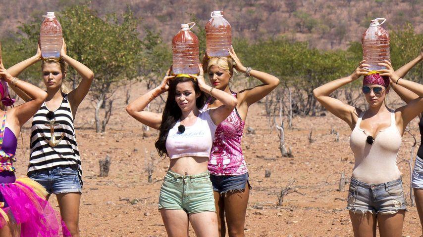 """Trash-TV: Habt ihr genug von """"Wild Girls"""" und Co.?"""