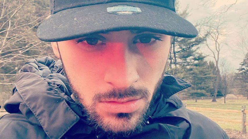 Zayn Malik, Musiker