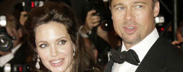 Angelina Jolie und Brad Pitt 2008