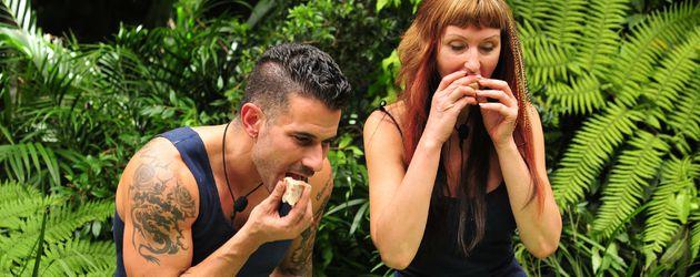 Marc Terenzi und Hanka Rackwitz in einer Dschungelprüfung