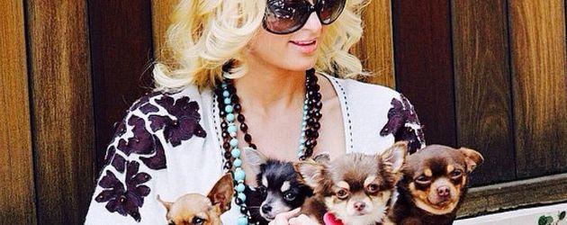 Paris Hilton mit ihren Hunden